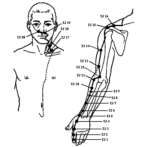 akupressur punkter på kroppen